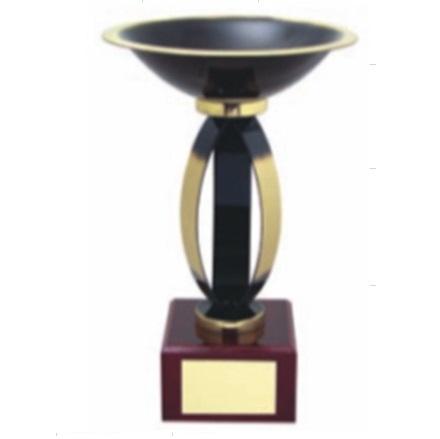 Pokal B401, moderne oblike